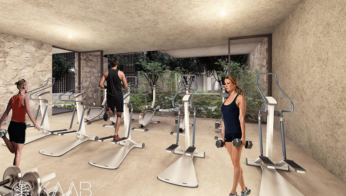 vista gym - Kaab at the Park